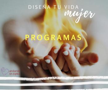 AEE programa